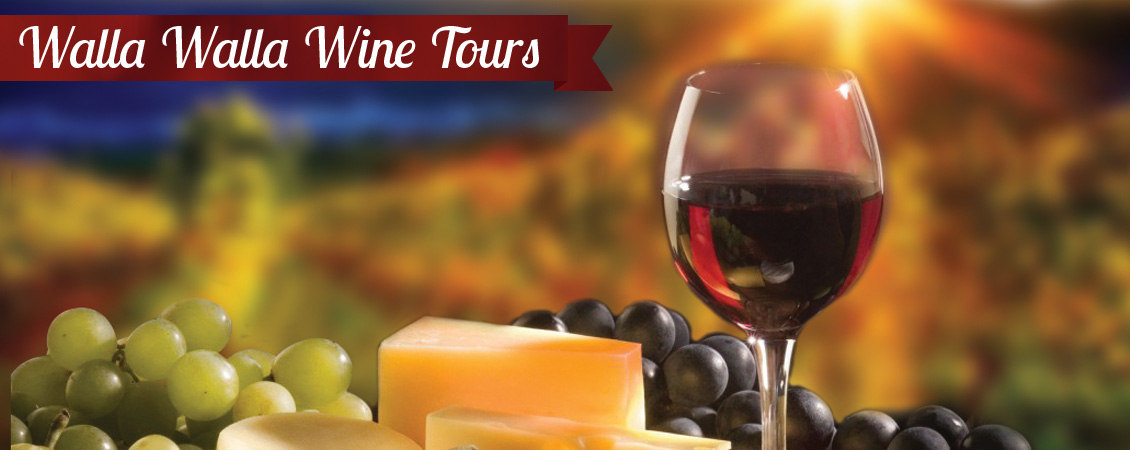 Wine Tours - Book Now